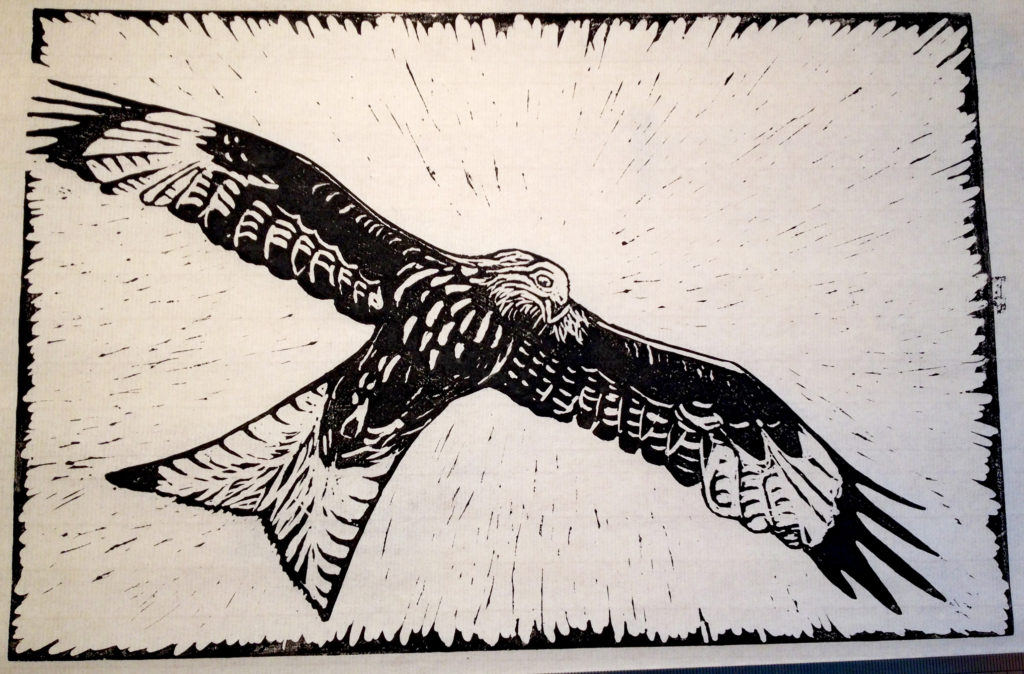 Red Kite Lino Cut